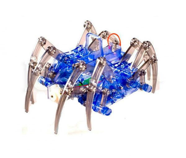 Robot Araña para niños